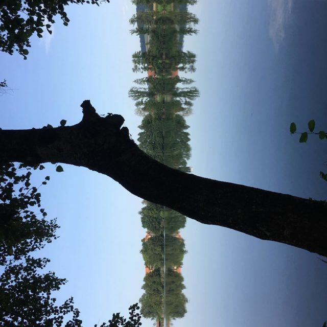 Mirrors mirror infinity and 338 trust versus worries in thehellip